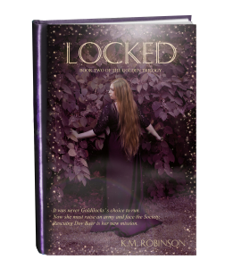 locked cover in book form copy shine