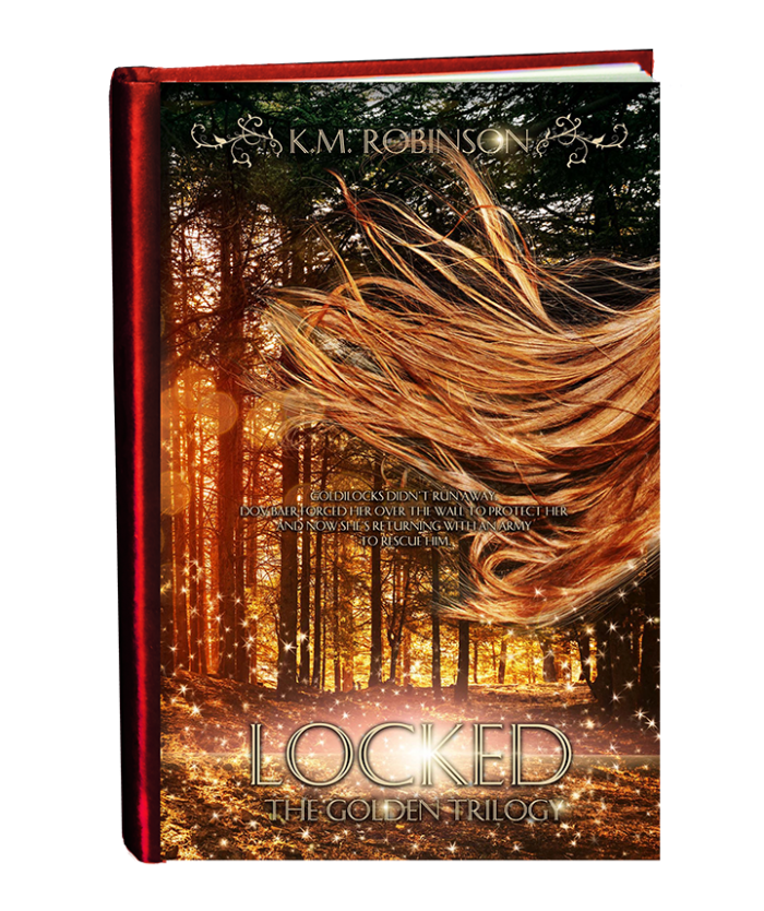 Locked 2019 cover in book form-final2 small