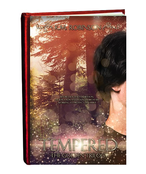 Tempered 2019 cover in book form-final2 small